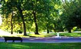 Park ve Çevre