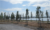 Göçmen kuş güzergahında önemli bir durak olan Kamil Abdüş Gölü'nün mülkiyet problemi olmayan alanında rekreasyon çalışmalarına başlandı.